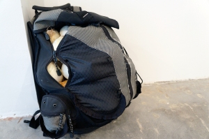 an unnamed backpack. 2013